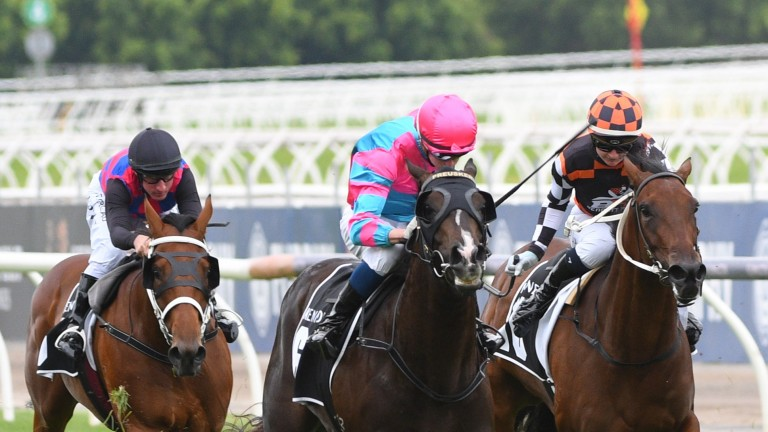 The blinkers appear to have worked their magic as Lunar Fox (centre) lands the Australian Guineas at 300-1