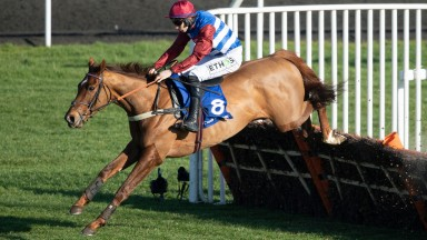 Tritonic and Adrian Heskin ping the final flight to win the Grade 2 Adonis Juvenile at Kempton