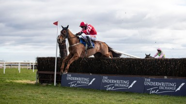 Acapella Bourgeois jumps the last en route to landing the Bobbyjo Chase