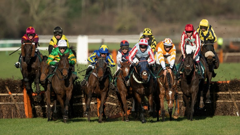 The back straight at Warwick is well lit by the direction of the sun and provides a colourful frame as the runners jump the third-last in a 2m novice handicap hurdle, won by Will Sting (Aidan Coleman, second right)