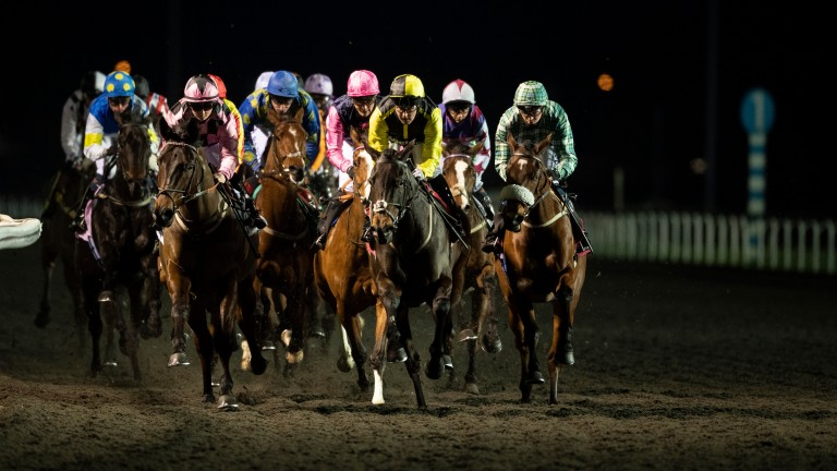The winner Great Esteem (Hollie Doyle, pink) leads the field with a circuit to race in a 1m4f novice stakes at Kempton