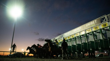 A colourful twilight illuminates the runners as they break from the stalls in a 6f handicap at Kempton