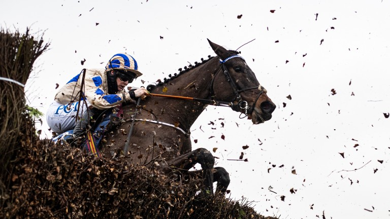 Captain Guinness and rider Rachael Blackmore jump through the sprayed birch chasing Energumene at Naas in January