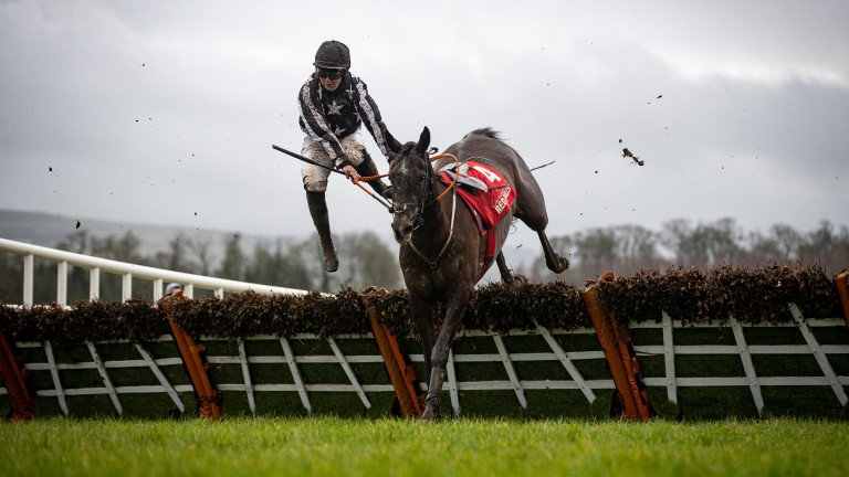 Following persistent rain, Gowran Park's Thyestes Chase day made for testing conditions. Susie Doyle is unseated at the final flight from Imperial Sachin's as only three finish from the nine that set out in the Ladies Auction Maiden Hurdle