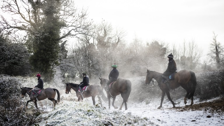 Steam rises from Ciaran Murphy's string as they return to his stables near Mullingar, County Westmeath after morning exercise. Heavy snow and rainfall caused several abandonments in Ireland in early January
