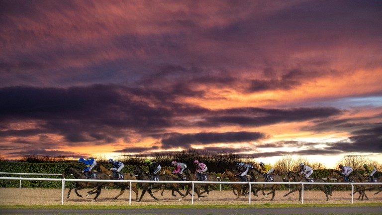 Dundalk regular Sharjah, with young rider Andy Slattery on board, leads the runners towards the back straight in a 1m2f handicap against the backdrop of a stunning January sunset
