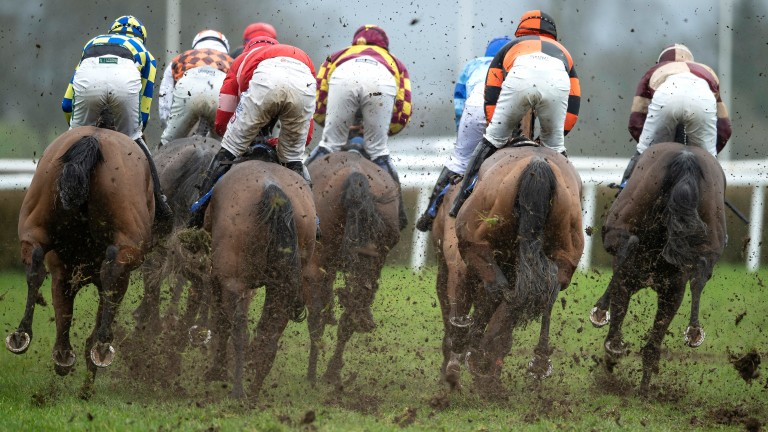 Bottomless conditions for the conditional jockeys at Wincanton