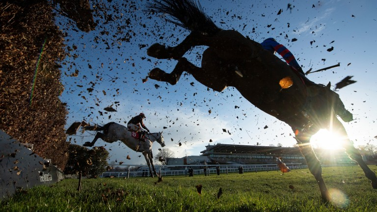 Sandown: set to host competitive Imperial Cup card on Saturday