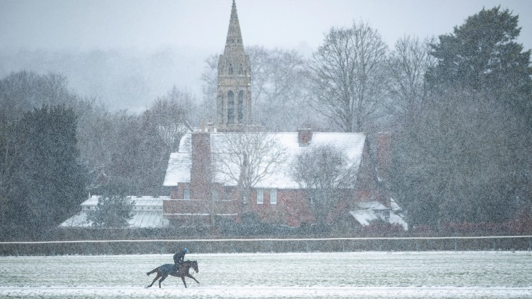 'The Beast from the East' returned in February, blanketing Newmarket in snow