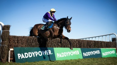 Cilaos Emery jumps the last en route to landing the Grade 3 Whatoddspaddy? Chase