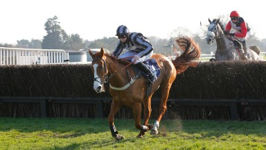 High Up In The Air and Joshua Moore complete a five timer by winning the Enjoy Champagne Piaff Novices' Limited Handicap Chase at Fontwell. 28/2/2021 Pic Steve Davies