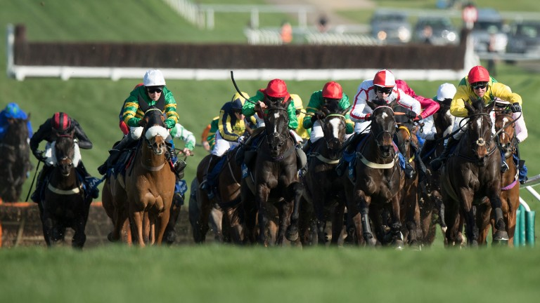 Supasundae (yellow sleeves, extreme right) races round the final bend in the 2017 Coral Cup Handicap Hurdle at Cheltenham. A year later he finished runner-up to Penhill in the Grade 1 Stayers' Hurdle at the festival