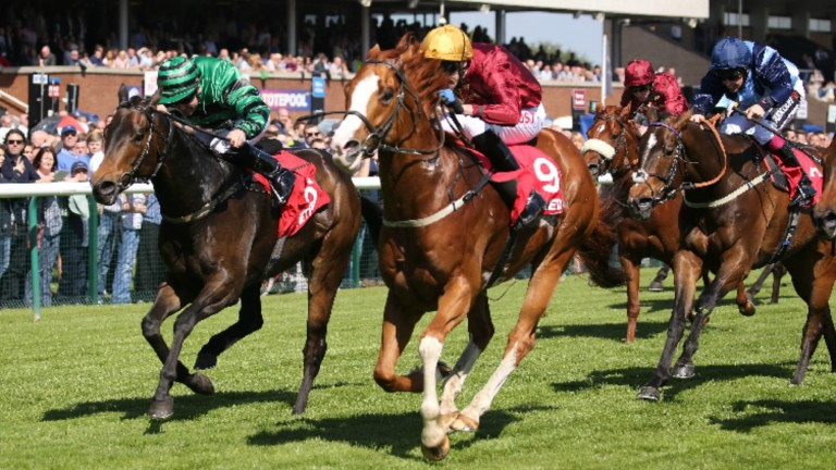 Pearl Secret (near side) won the Temple Stakes at Haydock