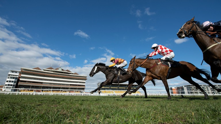 Umbrigado (far side) pokes his head in front to land the Greatwood Gold Cup