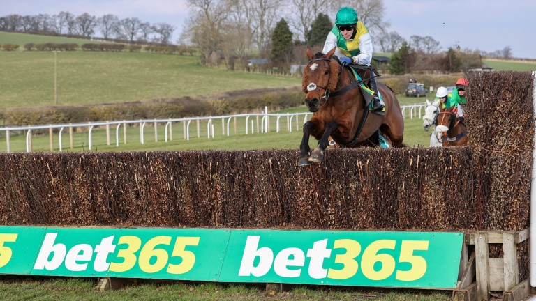 Cloth Cap: advertised his Grand National claims at Kelso on Saturday