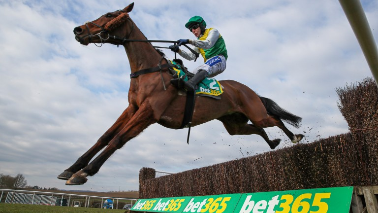 Cloth Cap: strong favourite for the Grand National after an imperious prep run at Kelso