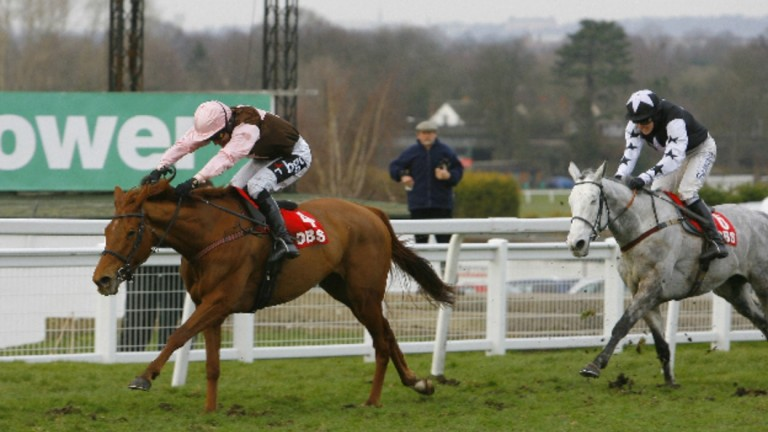 Kentucky Sky finished second to Golden Sunbird and Tony McCoy in the Listed bumper at Sandown