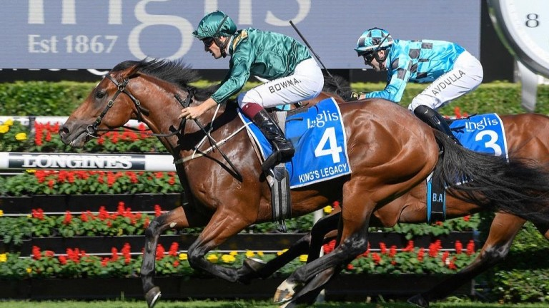 King's Legacy: dual Group 1-winning son of Redoute's Choice has retired to Coolmore Australia