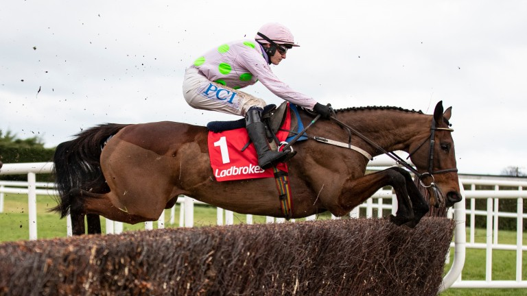 Chacun Pour Soi: hot favourite for Wednesday's Champion Chase