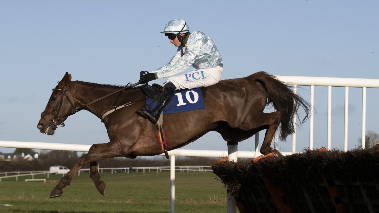 Gauloise: one of four Willie Mullins-trained runners in the Dawn Run