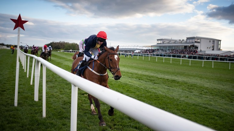 Longhouse Poet: to be aimed at the Irish Grand National rather than the festival