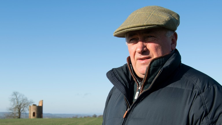Always looking for an edge: Paul Nicholls, 11-time champion trainer, surveys the scene from the top of his gallops