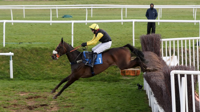Espoir De Romay: put in an impressive round of jumping to win at Leicester