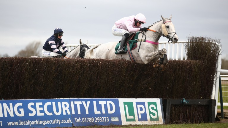 Grey day at Warwick: Volcano wins again at the Midlands track