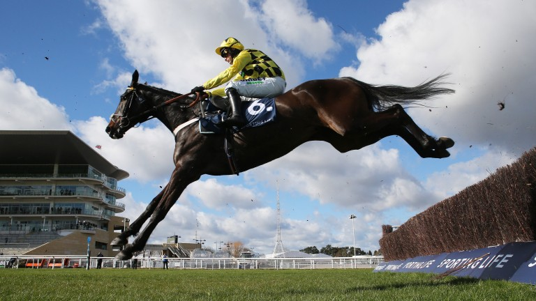 Shishkin glides to a serene success in the Arkle Novices' Chase