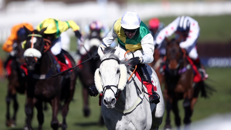 Vintage Clouds: winner of the 2021 Ultima Handicap Chase at Cheltenham