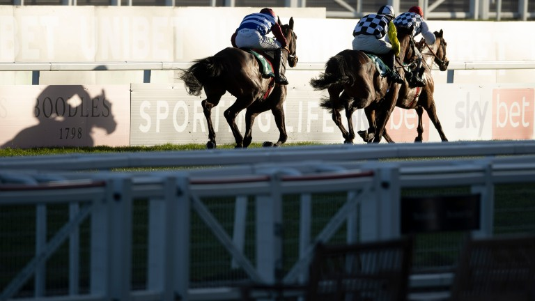 Galvin (in front) gets the better of a tight finish to the National Hunt Chase