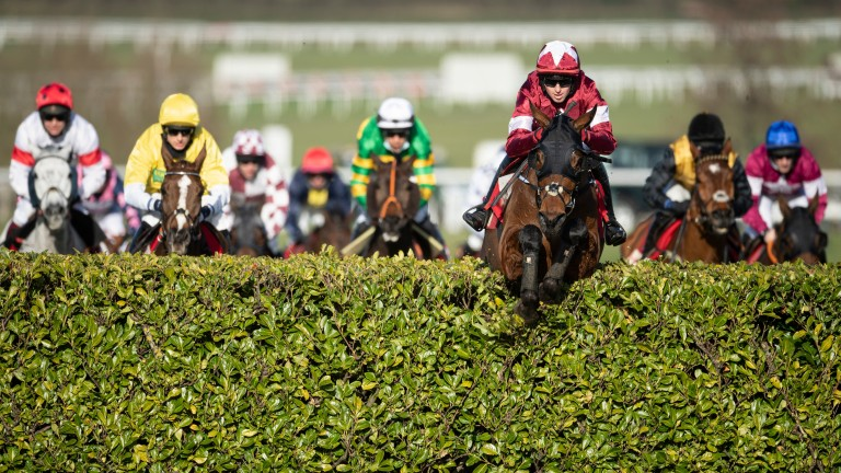 Tiger Roll: will the Mildmay course pose any problems for the dual Grand National hero?