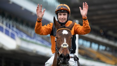 Put The Kettle On: Aidan Coleman will ride the Champion Chase heroine at Gowran Park