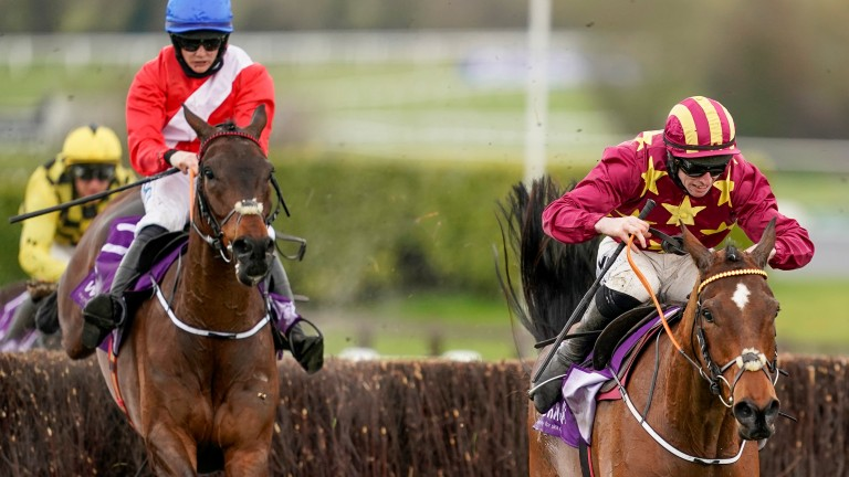 Minella Indo (right): led home a 1-2 for Henry de Bromhead at the Cheltenham Festival