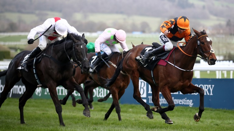 Nube Negra (left): produced an excellent display to finish second in the Queen Mother Champion Chase