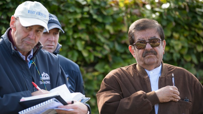Sheikh Hamdan and Shadwell racing manager Angus Gold during inspections at Book 1 of the Tattersalls October Yearling Sale