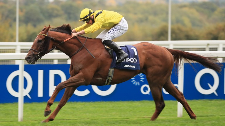 Soft ground key to Addeybb in the King George VI and Queen Elizabeth Qipco Stakes