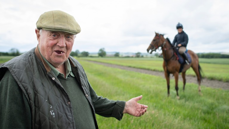 Mick Easterby: joint-training partnership with son David