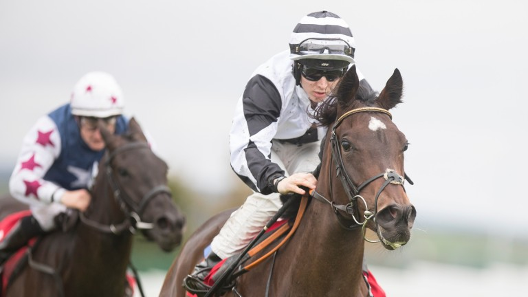 Coeur D'Amour carries the Fitzpatrick colours to success at Galway