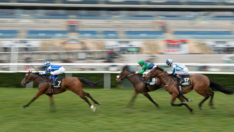 Haqeeqy: Lincoln winner is among the favourites for the Royal Hunt Cup