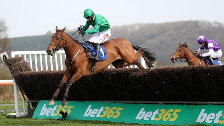 Ballymoy: won the Boyne Cup at Ludlow on Wednesday