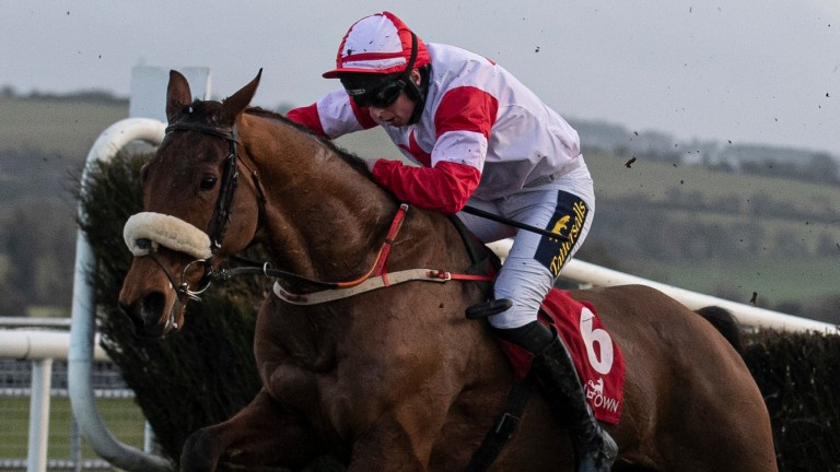 The Big Dog: a general 12-1 chance for the BoyleSports Irish Grand National