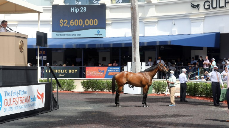 Hip 28, Wavertree Stables' Nyquist colt sells to Michael Tabor for $2.6 million at the Gulfstream Sale
