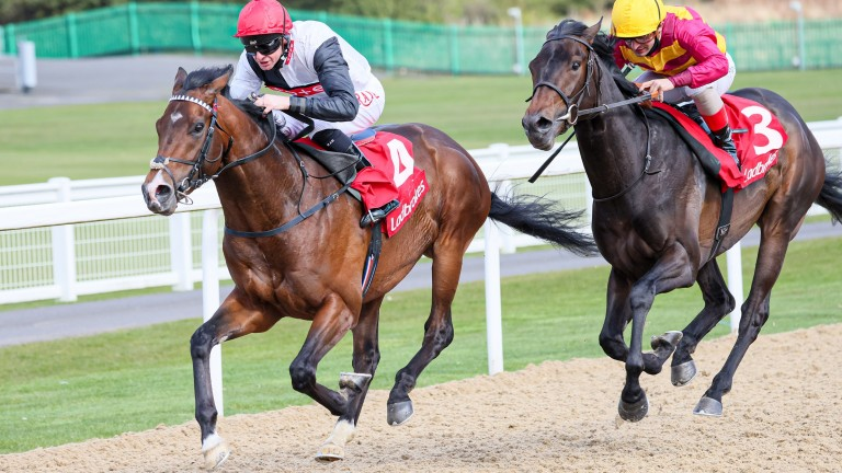 Megallan (left) defeats Legion Of Honour in the Listed Burradon Stakes