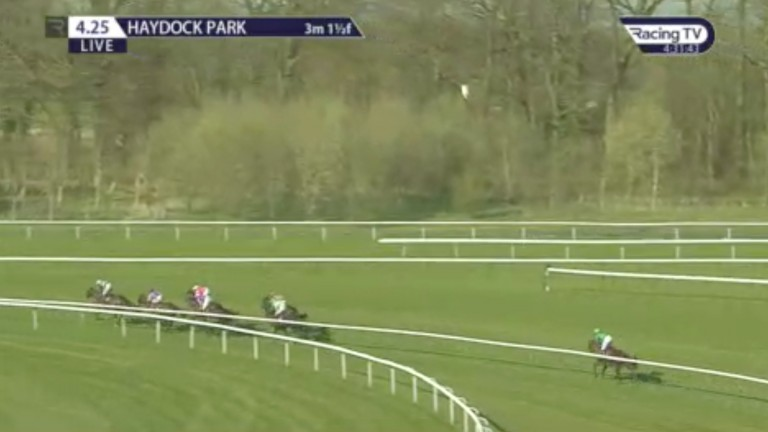 Snuff Box is almost ten lengths behind the back of the principals as the runners reach the home straight