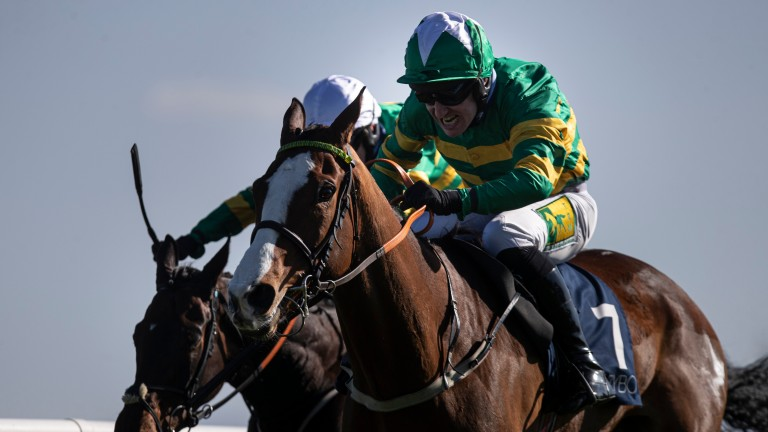 Hearts Are Trumps: delivered his best when last seen at Fairyhouse