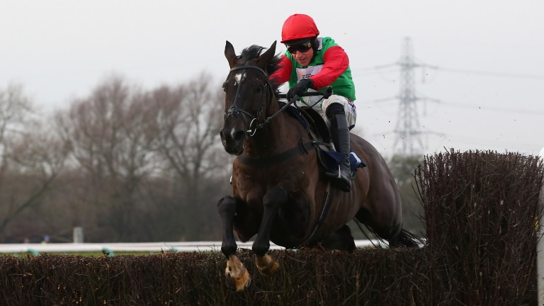 Destrier: looks to have been primed for the Red Rum