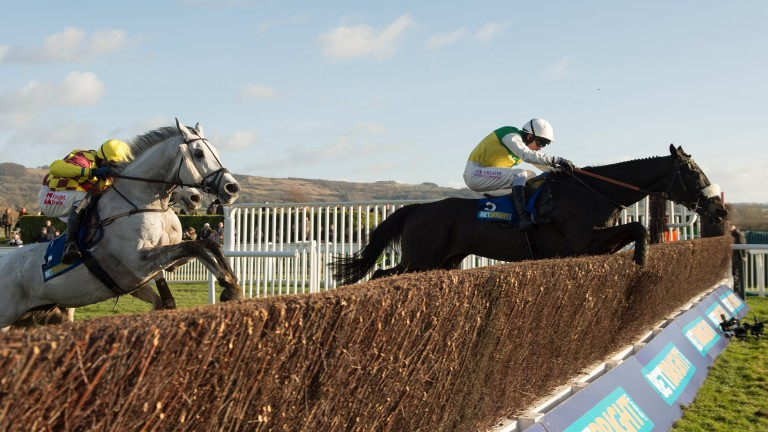 Many Clouds leads Dynaste over the final fence on his way to victory in the 2015 BetBright Cup Chase at Cheltenham