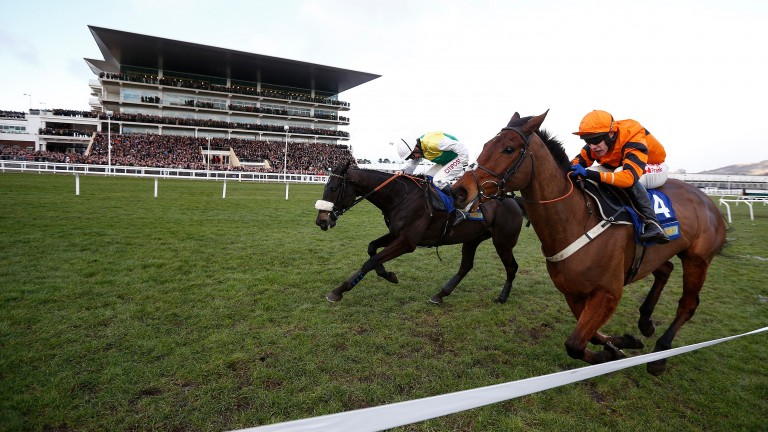 Many Clouds (noseband) gets up to beat Thistlecrack at Cheltenham in 2017 only to collapse and die after pulling up