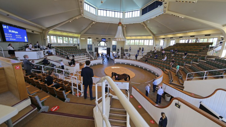 Tattersalls: buyers at this year's Craven Sale stand to win some lucrative bonuses
